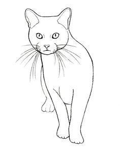 Gato Dibujo Malen Katze Zeichnen Schwarze Katze Kunst Katzenzeichnung