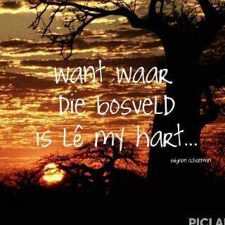 bosveld le my hart