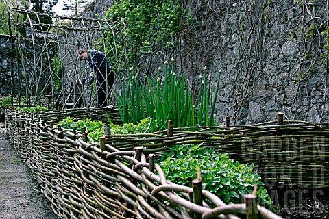 Wonderful wattle fencing used as dual planting bed purpose.