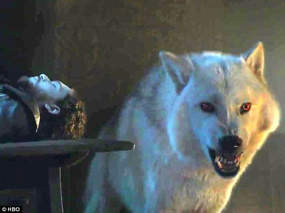 Dog not gone: The extended version reveals that the Onion Knight is not fighting the men present over the body - they are preparing to defend it, with the help of the late Lord Commander's direwolf Ghost, whom fans will be relieved to see yet lives
