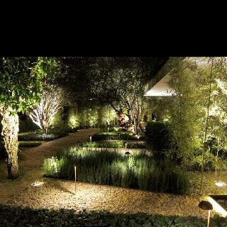 Jardim comestivel!
