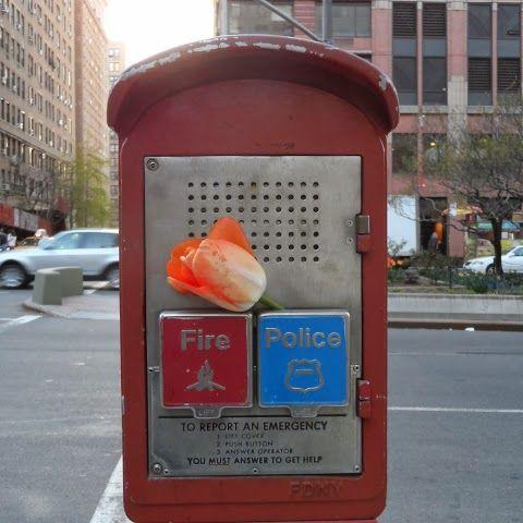 New York. Un romántico o un agradecimiento?