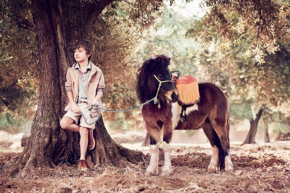 O menino e o cavalinho