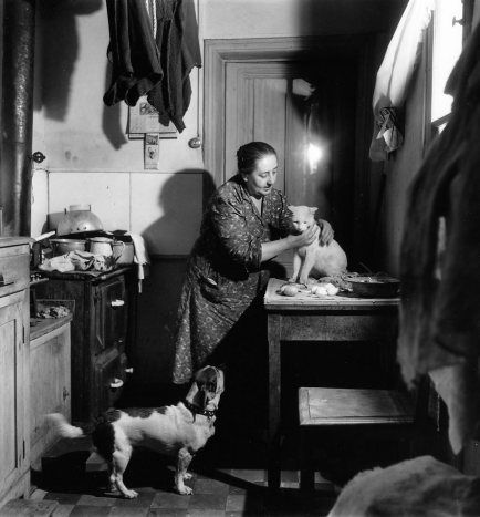 J'adore Robert Doisneau, et je n'ai pas encore eu l'idée de le présenter aussi sur ce blog Pourtant ses clichés sur les chats sont célèbres, en voici quelques-uns. Concierge au chat blanc L'enfant, le chat et la colombe 1964 Paris, les chats, la nuit...