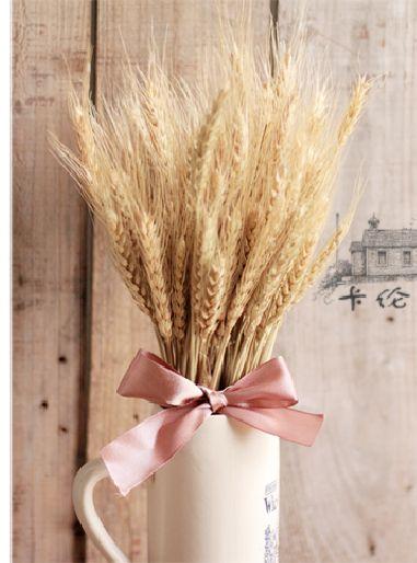 Pas cher 100 pcs naturel fleurs séchées épi de blé pour bricolage artisanat décor flores photographie