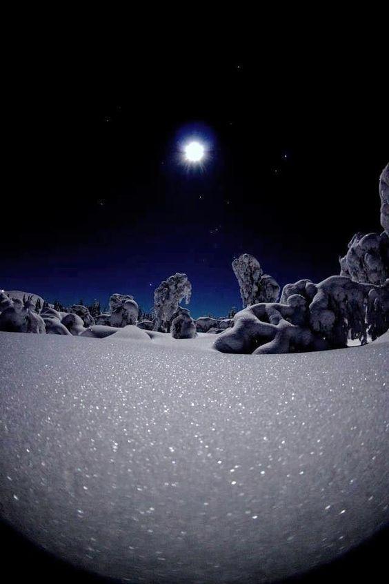 winter.: