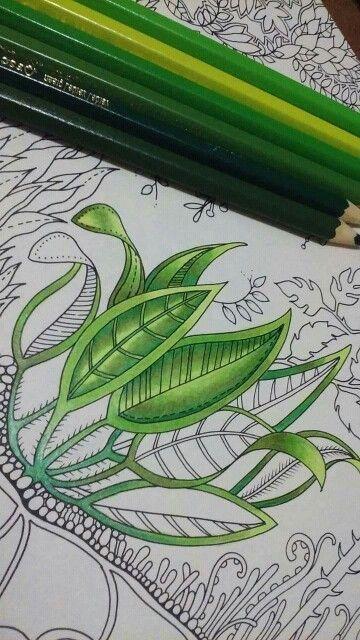 Pintando folhas #leaves