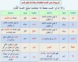 نتيجة بحث الصور عن قواعد اللغة العربية Learn Arabic Alphabet Arabic Alphabet For Kids Arabic Kids