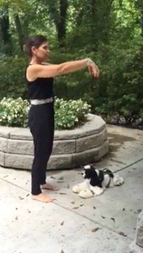 Commencing form: qi gong #exercise 1