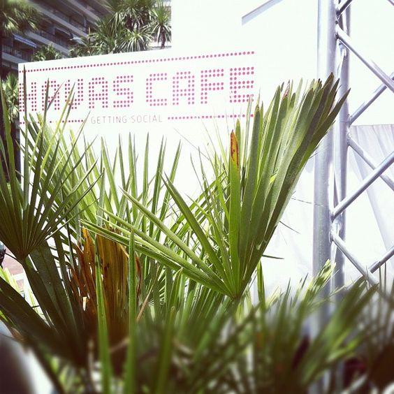 #HavasCafe