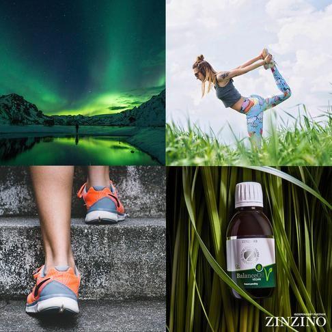 Scandinavian Health Protocol Information In 2020 Health Health Challenge Natural Supplements