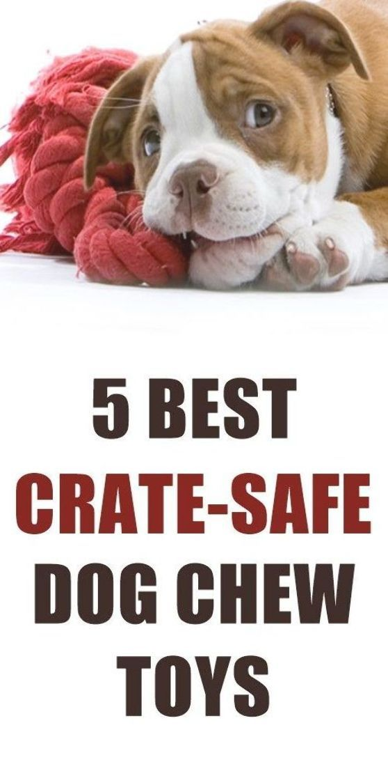Here Are The 5 Best Crate Safe Chew Toys For Dogs These Toys Will Keep Your Dog Busy In A Crate Without You Havin Safe Dog Toys Puppy Chew Toys Safe Dog