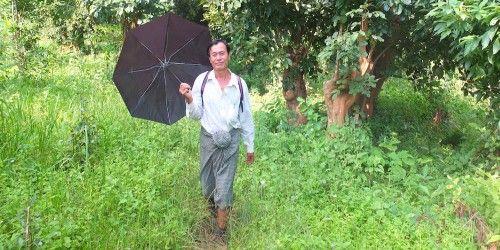 All About The Burmese Longyi