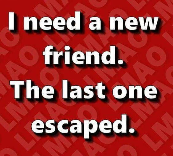 I need a new friend.