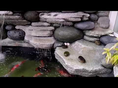 Jasa Pembuatan Kolam Air Terjun Relief Tebing Youtube Kolam Ikan Kolam Taman Air
