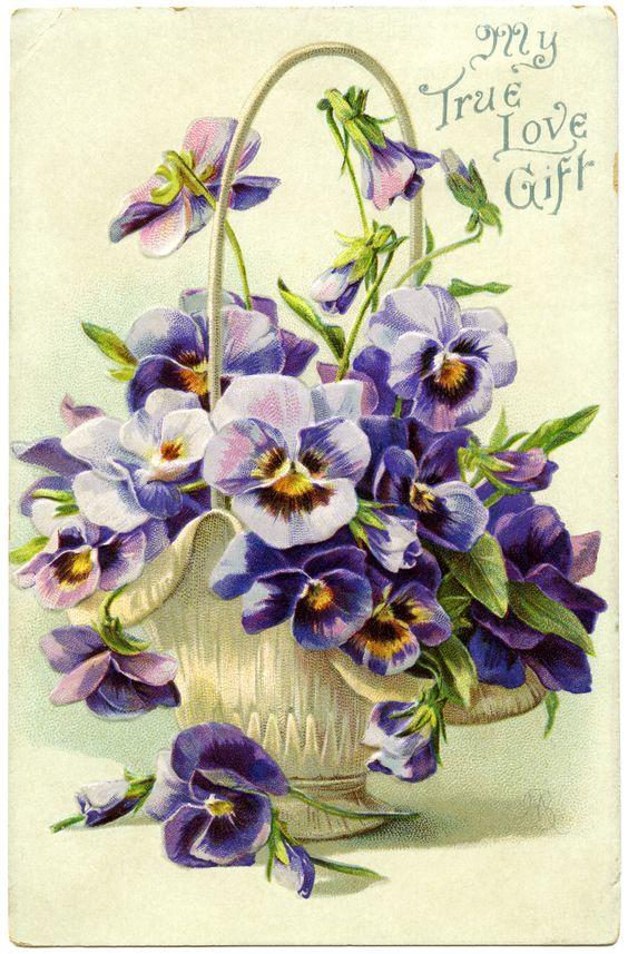free postcard images vintage | FREE Vintage Postcard ~ My True Love Gift | Old Design Shop Blog: