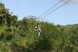 Zip-lining through a rain forest!