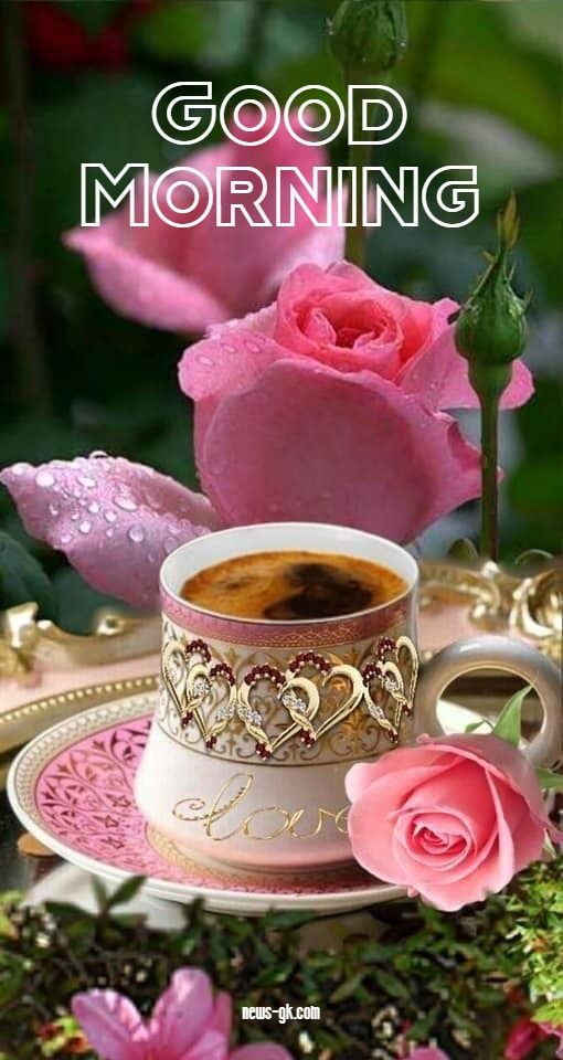 Good Morning Coffee Images Hd Free Download Good Morning Coffee Good Morning Coffee Images Morning Coffee Images