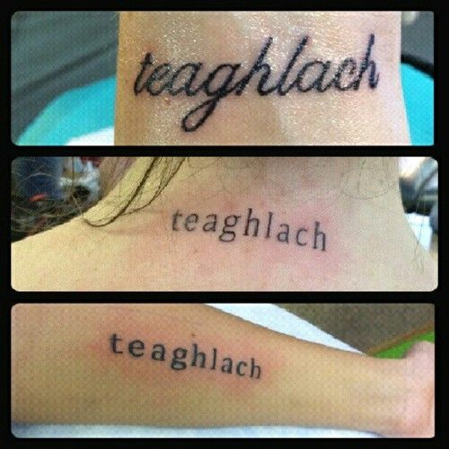 "Teaghlach, it means 'Family' in Irish.  I want to get a tattoo that says ""Teaghlach Go Deo"" which means Family Forever (: <3"