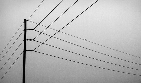 Powerline Intersection.  C. Bickham Dickson Park, Shreveport, Louisiana, 2009.  Prints available.