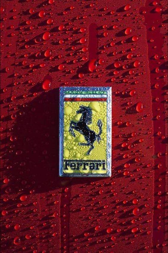 フェラーリ|CAR LIFE-車ライフ-