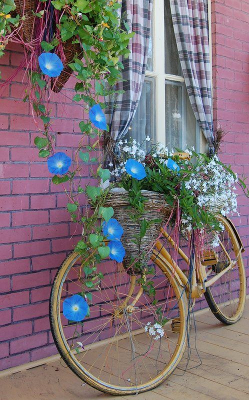 Even a bike can be a garden - bike on porch in Baie St. Paul, Quebec