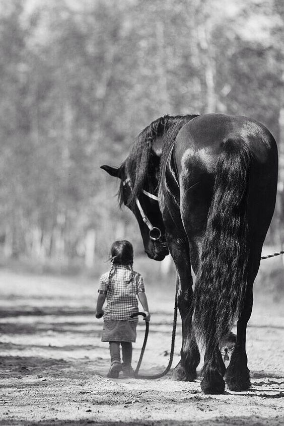 Shows that children have no fear, and horses are one of the great friends and guardians in the world.:
