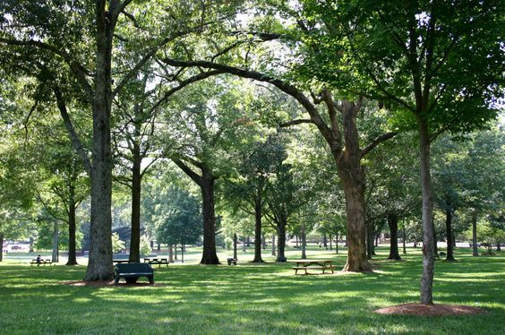 Home is the where the heart is - The Grove.