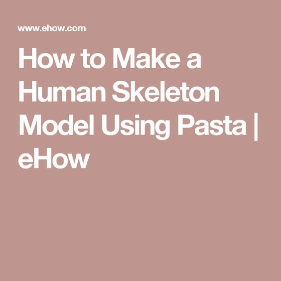 How to Make a Human Skeleton Model Using Pasta | eHow