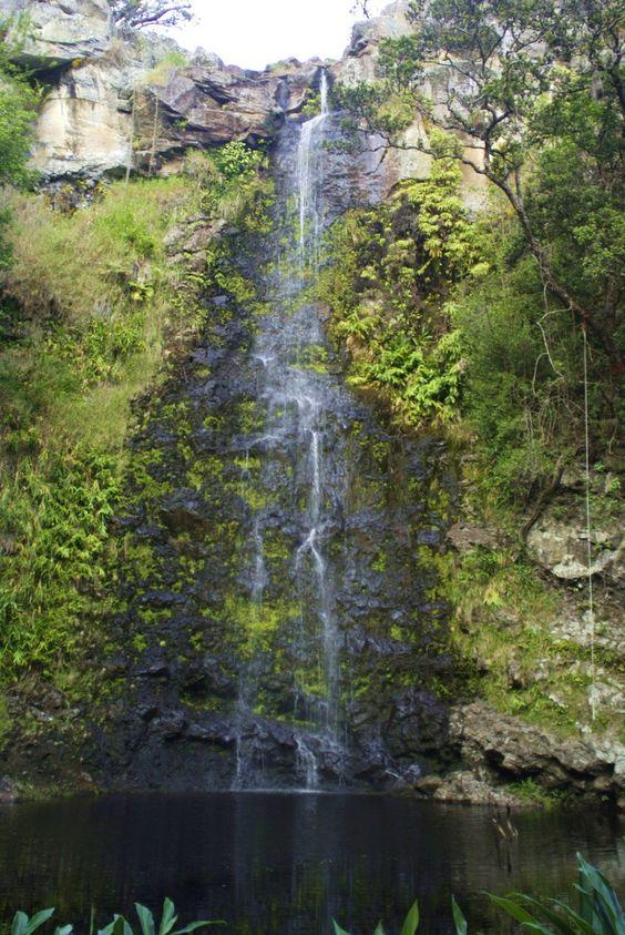 Anna's Pond, Kamuela, HI