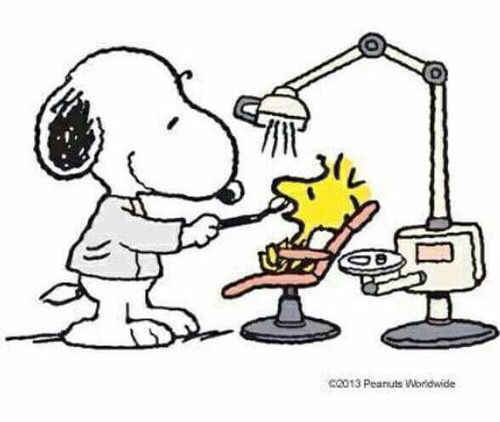 Snoopy & Woodstock at the dentist