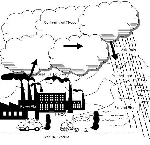 pollution from vehicles essay