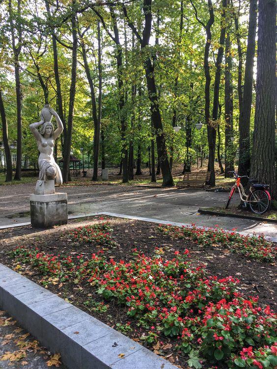 В парке Светлогорска. Фото Жени Шведы
