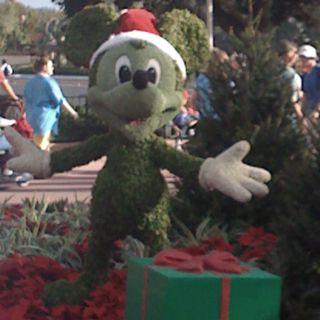 Merry Christmas from Epcot (Orlando, FL)