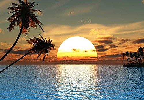 Large Wall Mural Beautiful Tropical Scenery Landscape Palm Trees On The Beach At Sunset Vinyl Wallpaper Removab Large Wall Murals Wall Murals Seascape Tropical
