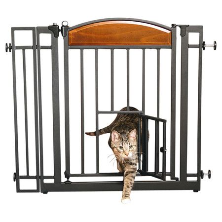 Pet Gate Gates And Steel Frame On Pinterest