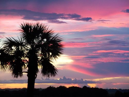 Amelia Island, FL By Ted Griffin - Love Amelia Island