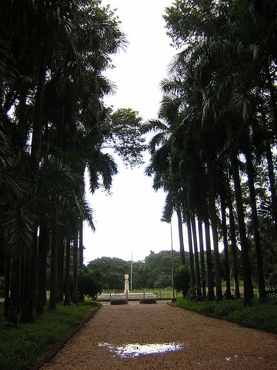 Botanical Gardens For Nature Lover