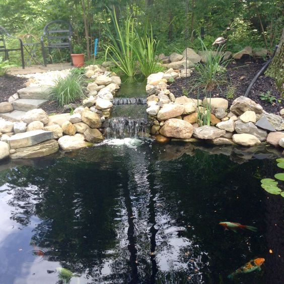 Bog filter natural filter koi pond diy outdoor ideas for Yard pond filters