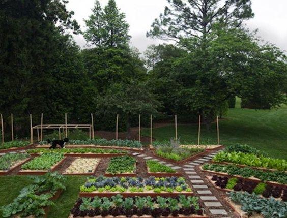 The White House garden, spring of 2011
