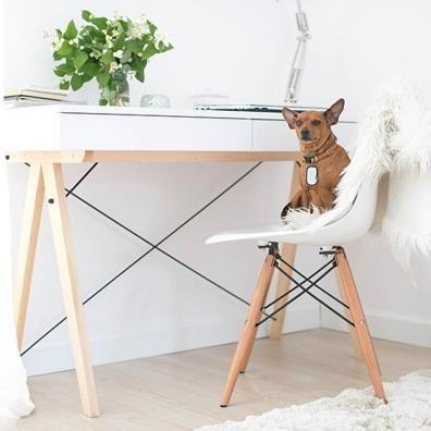 Moderna scrivania con due comodi cassetti, in legno massiccio e laminato. Design intramontabile, che si adatta perfettamente in ogni stanza. Il piano di lavoro (11 cm) è realizzato con un panello laminato. Il colore della scrivania è semi lucido. Il prodotto arriva da assemblare.