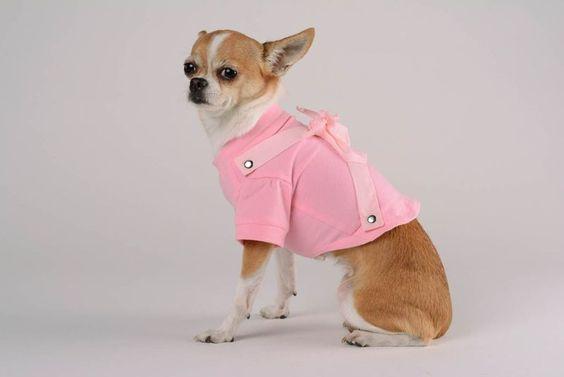 3. Hund: Bekleidung - T-Shirt für Hunde - ein Designerstück von Tierbedarf bei DaWanda