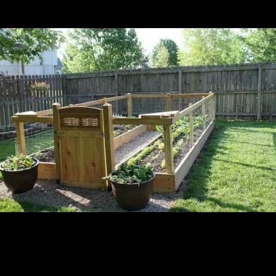 Small Backyard Ideas Dogs: Gardens And Dogs