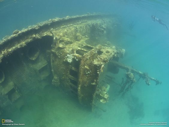 A snorkeler gazes at a shallow shipwreck that lies amid the protected waters of Palau's inner lagoon. The ship was a fishing vessel damaged by an intense storm three decades ago. It has surprisingly little marine growth on it, probably due to the fact that it rests in a part of the lagoon that receives no current and therefore few coral larvae.