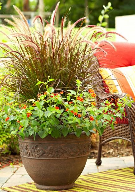 30 beautiful container gardens gardens flower and end of - Potted gardentricks beautiful flowers ...