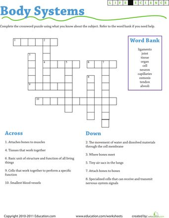 Printables 7th Grade Science Worksheets life science crossword and on pinterest worksheets body systems