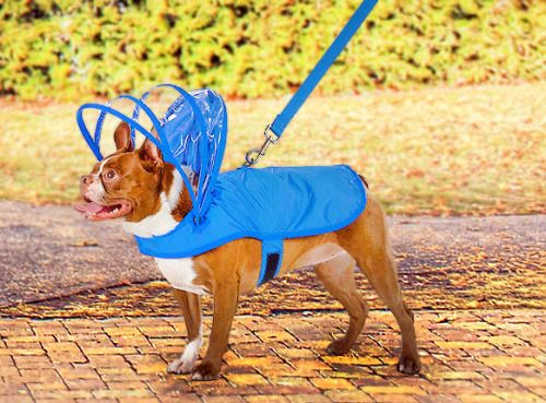 Push Pushi Rainbow Dog Raincoat  Keep your dog dry and retro futuristic! (Check It Out)  Gifts Under $100 on: Facebook | Pinterest | Twitter