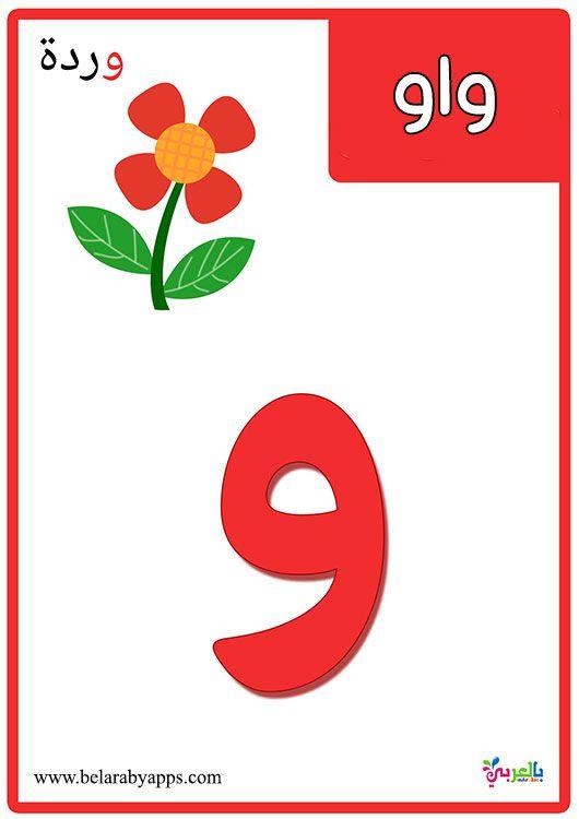بطاقات الحروف العربية مع الصور للاطفال تعليم اطفال الحروف الهجائية مع الكلمات بالعربي نتعلم Preschool Worksheets Baby Learning Arabic Worksheets