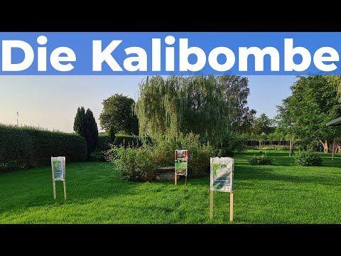 Rasen Dungen Herbst Patentkali Cuxin Rasendunger In Ausfuhrlicher Vorstellung Test Youtube In 2020 Rasen Dungen Rasen Vorstellung