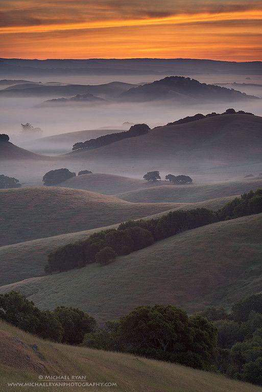 Endless Layers, Petaluma,  California